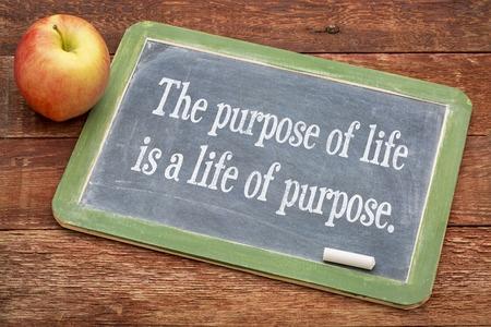 Money Needs A Purpose